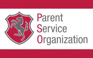 Parent Service Organization
